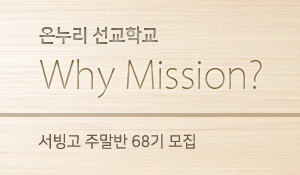 17whymission_s_s